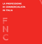La Professione di Commercialista in Italia